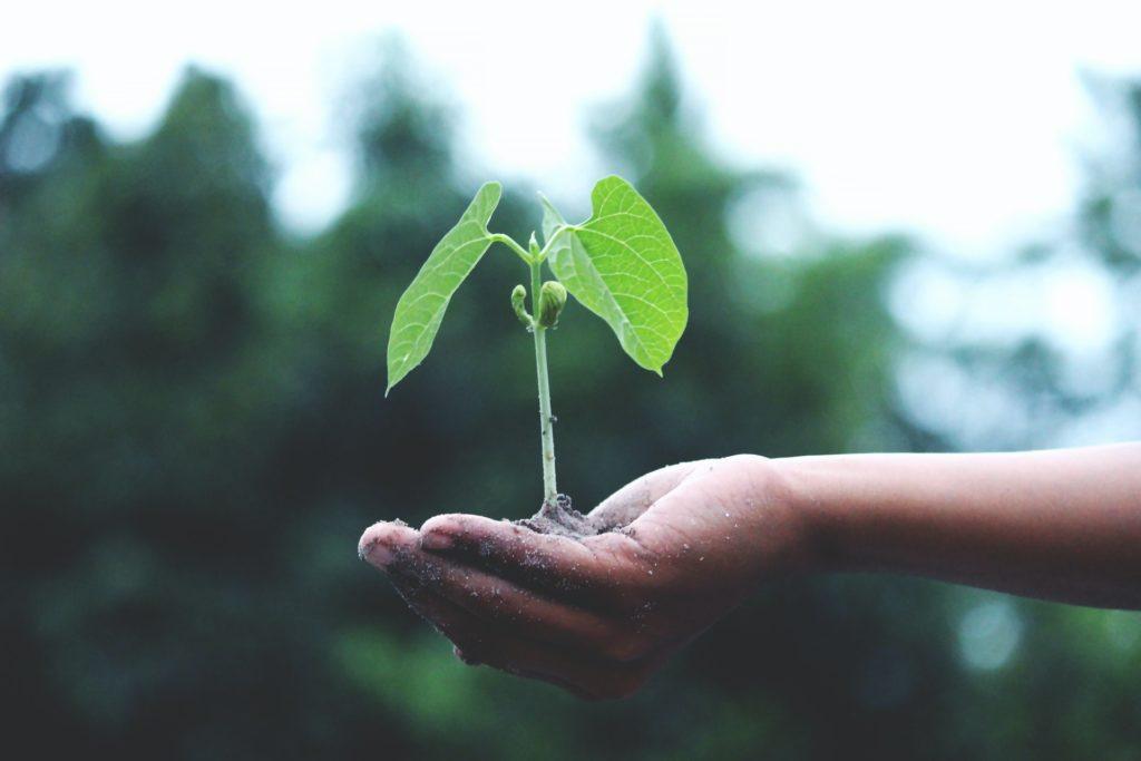 A economia circular colabora para um futuro sustentavel